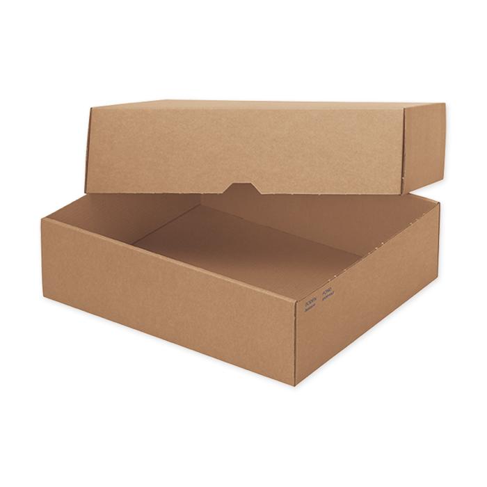 Brieger Sleeve boxes Economy