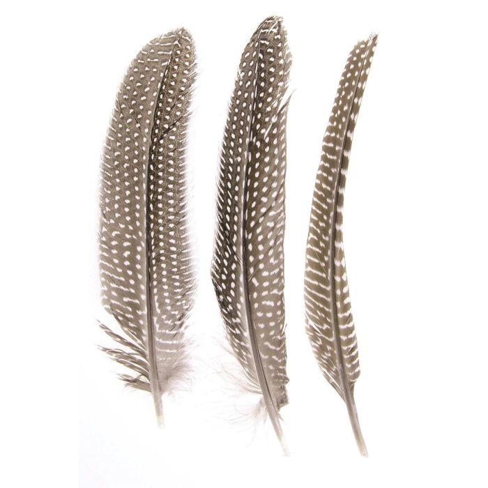 Glorex Guinea Fowl Feathers 16 - 19 cm, 5 pcs