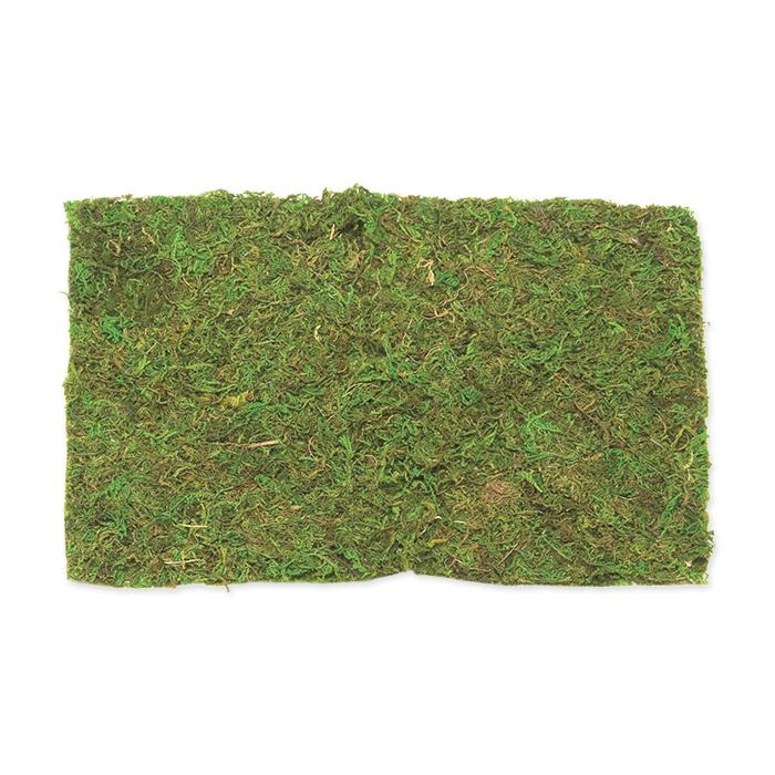 Glorex Moos sheet