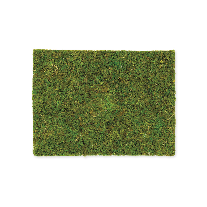 Glorex Moss board
