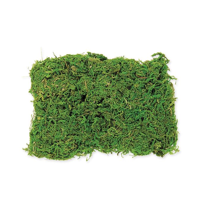 Glorex Moss