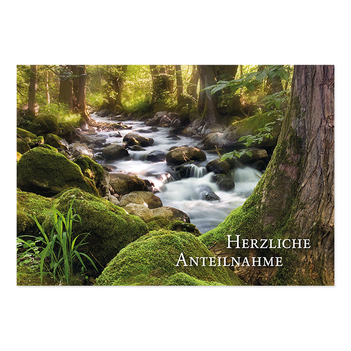 Natur Verlag Condolence card - forest brook