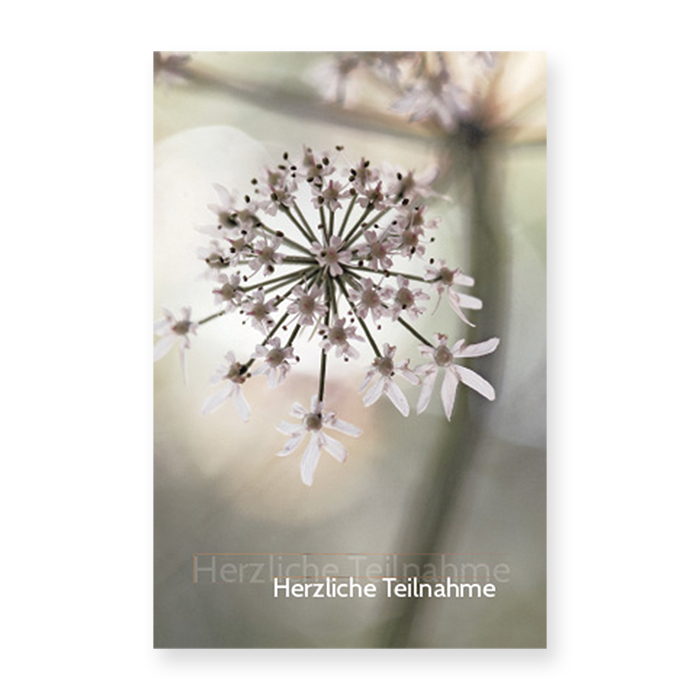 Natur Verlag Condolences card - Chevril flowers