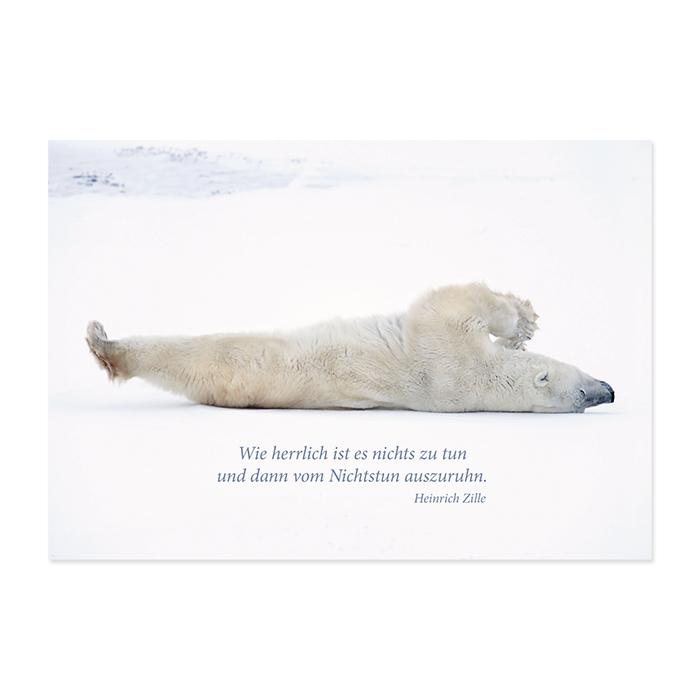 Natur Verlag Ruhestandkarte - Eisbär