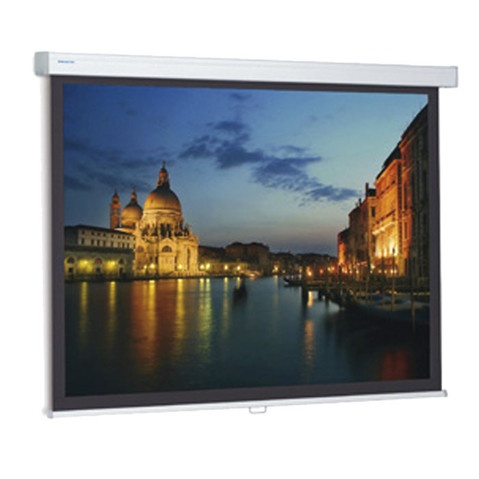 Projecta Projection screen ProScreen CSR